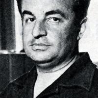 Gino Negri