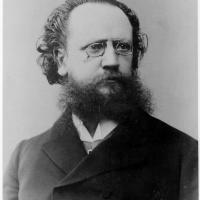 Adolf Müller Junior